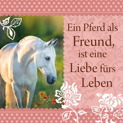"""H&H Romantisches Geschirrtuch """"Ein Pferd als Freund..."""" Handtuch"""