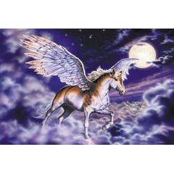 Fototapete Pegasus, glatt 2 m x 1,49 m