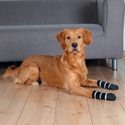 Trixie Hundesocken, Größe: L / 4,5 x 14 cm