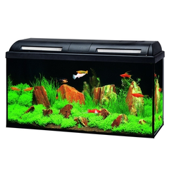 Marina Basic 96 Glasaquarium-Set, schwarz, LED - 80x30x40 cm