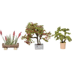 NOCH 14020 H0 3er-Set Zierpflanzen in Blumentöpfen, Sträucher