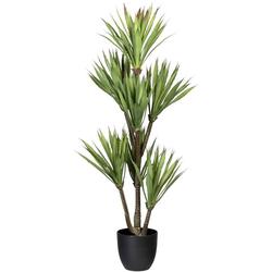 Künstliche Zimmerpflanze Yucca Yucca, Creativ green, Höhe 110 cm