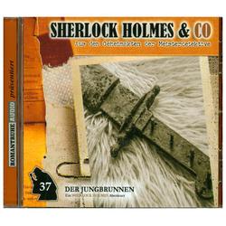 Sherlock Holmes & Co 37. Der Jungbrunnen (2. Teil): Hörbuchvon