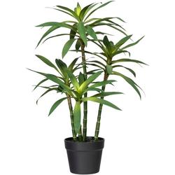Künstliche Zimmerpflanze Dracaena fragans Dracaena fragans, Creativ green, Höhe 65 cm
