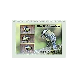 Die Kohlmeise und der Nachwuchs (Wandkalender 2021 DIN A4 quer)