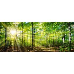 MARMONY Infrarotheizung Forest, 800 W, 100x40x2 cm (B/T/H) grün