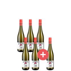 6er-Paket Bio or Bust Grauburgunder - Weinpakete