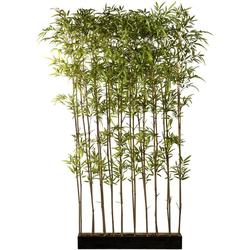 Künstliche Zimmerpflanze Bambusraumteiler Bambus, Creativ green, Höhe 200 cm, im Holzkasten