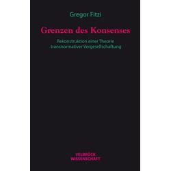 Grenzen des Konsenses als Buch von Gregor Fitzi
