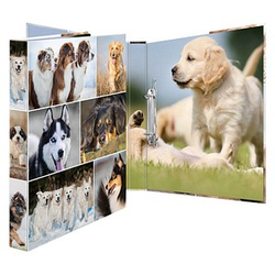 HERMA Animals Hunde Ringbuch 4-Ringe Motiv 3,5 cm DIN A4