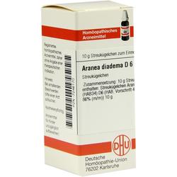 Aranea Diadema D 6 Globuli