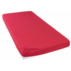 Spannbettlaken Jersey, my home, für Topper auf Boxspringbetten rot 200 cm x 200 cm