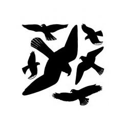 HERMA Fensterbilder Warnvögel 30x30 cm (5999)