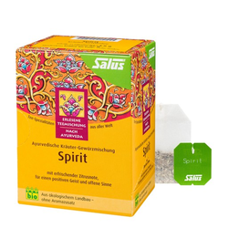 SPIRIT Kräutertee Bio Salus Filterbeutel 15 St