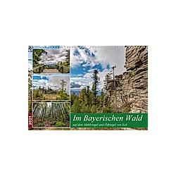 Im Bayerischen Wald auf dem Mühlriegel und Ödriegel von Eck (Wandkalender 2021 DIN A3 quer)