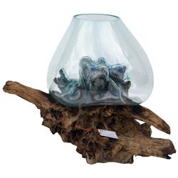 Guru-Shop Dekovase Wurzelholz Vase - Ø Glas bis 50 cm M3