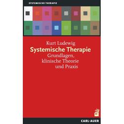 Systemische Therapie: Buch von Kurt Ludewig