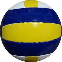 Winsport Volleyball