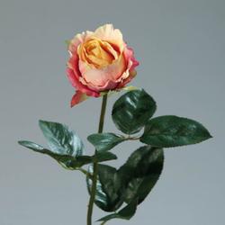 Rose Kolumbianische gelb/fuchs