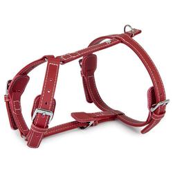 Das Lederband Geschirr Barcelona Indian-Red, Halsumfang: 25-45 cm