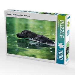 Schwarzer Labrador schwimmt im Wasser Lege-Größe 64 x 48 cm Foto-Puzzle Bild von Cornelia Strunz Puzzle
