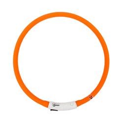 Dehner Hunde-Halsband Hunde-Leuchthalsband Beamie LED, Länge 60 cm rot