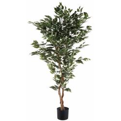 Kunstpflanze Ficus Benjamini Ficus Benjamini, Creativ green, Höhe 150 cm