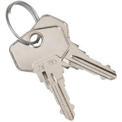 Wagner EWAR Schlüssel Zylinderschloss, Passend für Wagner Ewar Spender, 1 Packung = 2 Schlüssel, 37 x 22 x 2 mm
