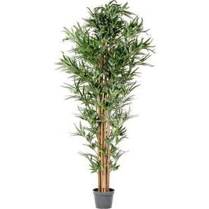 PLANTASIA Kunstpflanze Bambusstrauch, Höhe 190 cm, im Topf, mit Echtholzstamm