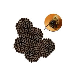 BigDean Insektenhotel Bienen Niströhre Nisthilfe Insektenhotel für Wildbienen & Hummeln 10 mm Durchmesser & 12 cm Länge