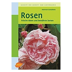 Rosen. Heinrich Schultheis  - Buch