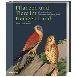 Pflanzen und Tiere im Heiligen Land als Buch von Peter Goodfellow