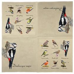 Linoows Papierserviette 20 Servietten mit Vogelsammlung, heimische Vögel,, Motiv Vogelsammlung, heimische Vögel, Vogel