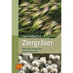 Taschenatlas Ziergräser. Martin Haberer  - Buch