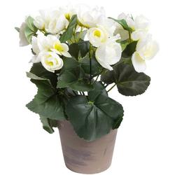 Kunstblume Begonie im Topf Begonie, Botanic-Haus, Höhe 23 cm