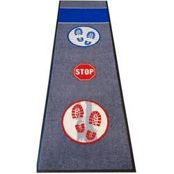 HostelNovo - Alfombra desinfectante para Calzado – Desinfección y Secado para la Suela de Sus Zapatos – Medidas: 60 x 200 cm – 1 Pieza