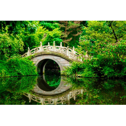 Fototapete Japanese Garden, glatt 3,50 m x 2,60 m