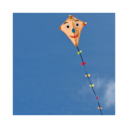 HQ Flug-Drache Drachen Line Eddy Happy Face 50cm