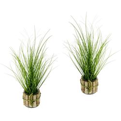 Kunstpflanze Gras, I.GE.A., Höhe 56 cm