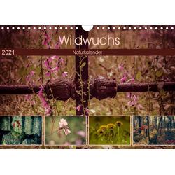 Wildwuchs 2021 (Wandkalender 2021 DIN A4 quer)