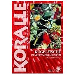 Kugelfische im Meerwasseraquarium. Marco Lichtenberger  - Buch