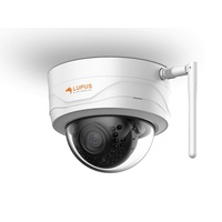 Lupus IP-Tag/Nacht-Dome-Kamera LE204 HD WLAN
