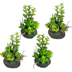 Künstliche Zimmerpflanze Sukkulentenarrangement Sukkulente, Creativ green, Höhe 16 cm, 4er Set