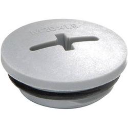 Wiska EVSG-ORD M20 RAL 7001 Verschlussschraube M20 Polyamid Silber-Grau (RAL 7001)
