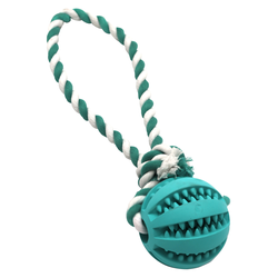 Schleuderball Denta Clean blau-weiß, Maße: ca. 24 cm