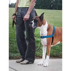 Easy WalkA® Luxus Hundegeschirr