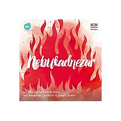 Nebukadnezar - Das Geheimnis des Feuerofens  2 Audio-CDs - Hörbuch