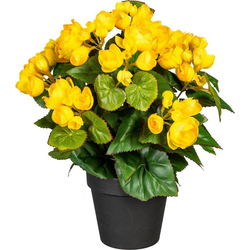 Künstliche Zimmerpflanze Eleonore Begonien, DELAVITA, Höhe 35 cm gelb