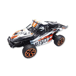 AMEWI Sand Buggy Extreme D5