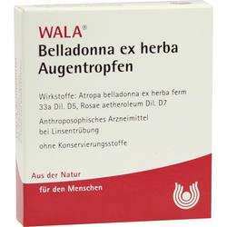 BELLADONNA EX HERBA Augentropfen